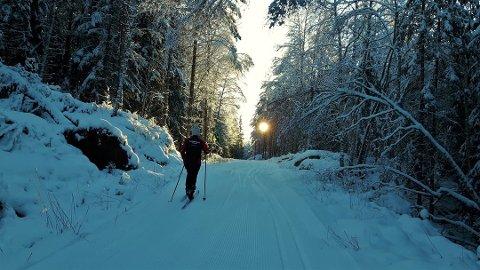 SKIFØRE I SIKTE: Det tørre vinterværet fortsetter, og dermed også de fine skiforholdene, som her på Mangenfjellet.