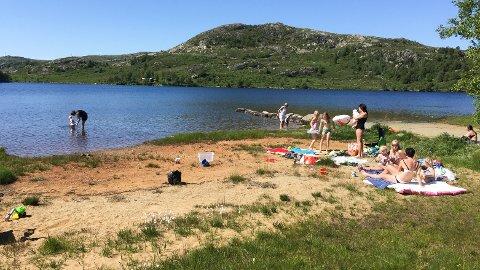 REINT: Badegjester kan trygt hoppa uti Melsvatnet i Time. Her er vasskvaliteten god.