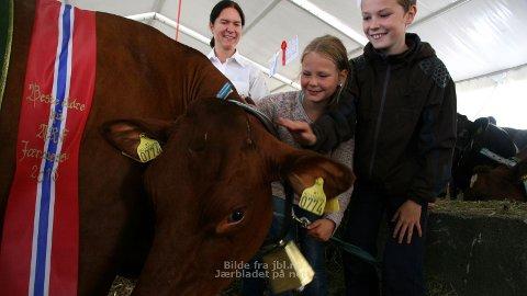 MISSEKU: Kua Sjokolade får ein ekstra kos av mor Ingunn, Amalie og Lars Dyvik.
