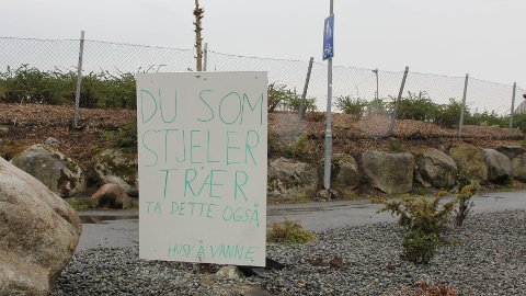Hugs å vanne: Ekteparet Øie har sitt seg leie på å bli fråstolne tre og har satt opp dette skiltet.