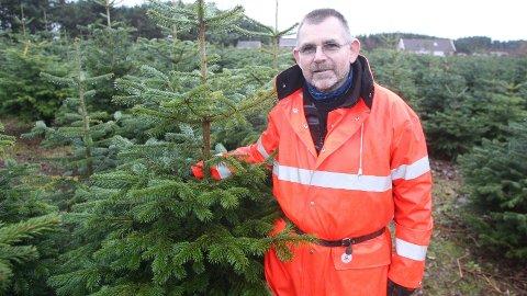 Juletreprodusent Torleif Hodne er skuffa etter brevet frå Fylkesmannen, som vurderer å stoppa utvidinga han har planar om. (Arkivfoto: Åge Bjørnevik)