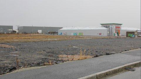 Denne tomta, like ved Plantasjen, er det Biltema ser for seg sitt nye varehus på Jæren.