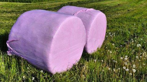 Rosa baller: Inntekta frå den rosa plasten vil kome godt med i forsking på brystkreft.