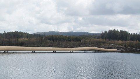 Njåskogen ligger på østbredden av Frøylandsvatnet. Ved Midgardsormen ligger det flere turløyper.
