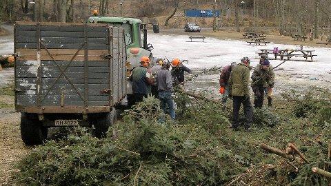 Skoggruppen til Bryne Vel har ryddet sitkagran vekk fra Livsgledesletta på Sandtangen.