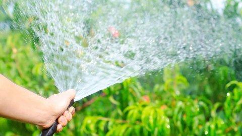 Det har vært vanningsforbud i Klepp, Time og Hå i over en måned. Fra mandag er forbudet opphevet.