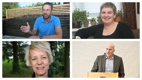 NYE I FORMANNSKAPET: Oppe frå venstre: Jone Edland (Ap), Ragnhild Stokka Dyngeland (Sp), Ingrid Fiskaa (SV) og Bjarte Solheim (V).