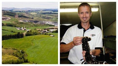 NÆRING: Her på Kalberg ønsker daglig leder for Norwegian Lobster Farm, Asbjørn Drengstig, å bygge et oppdrettsanlegg for hummer.