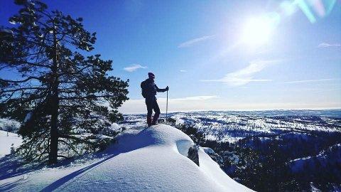 Utsikt: Fra Sigridtjørnfjell på Gautefall mot vest. Foto: Privat