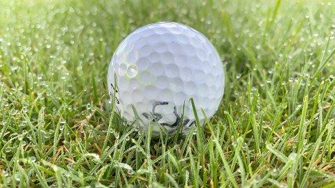Dei siste tre åra har det forsvunne mange ballar frå treningsfeltet til golfklubben. I helga forsvann rundt 1.000 ballar til ein verdi av nesten 10.000 kroner.