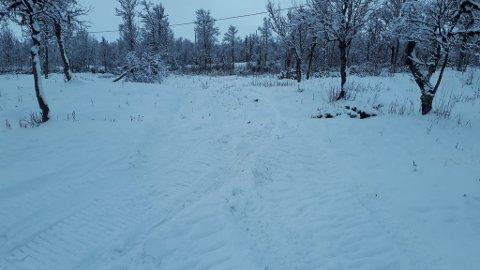 På Torsetlia er det nå grunnpreparert til skiløyper, forteller Reino Skjøtskift.