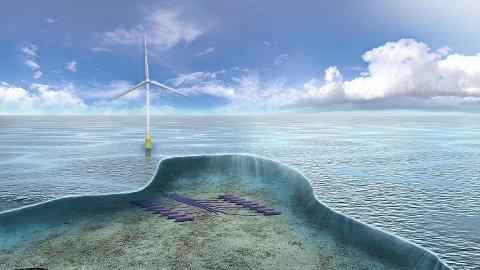 TechnipFMC ønsker å bygge hydrogenanlegg for å forsyne oljeplattformene med miljøvennlig energi.