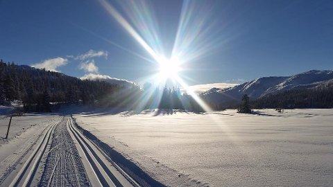 Dette bildet er fra Åsbøseterdalen i Nore og Uvdal. Flotte løyper - og mye snø.