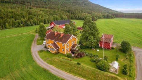 SOLGT: Praktgården i Flesberg ble solgt til et ungt par før sommeren.