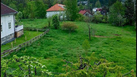 LANDSKAPET: Kulturmyndighetene i fylket mener landskapet på Bergetløkka er verdt å ta vare på. Rådmannen vil regulere til boligformål. Et knapt flertall blant politikerne er så langt for å verne området fra ytterligere utbygging.