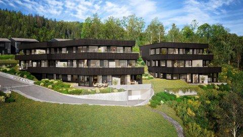 STOPPENKOLLEN SIKT: Disse leilighetene på toppen av Stoppenkollen ble lagt ut for salg før jul. Fire av 14 er alt solgt.