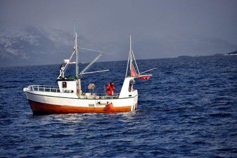 SJARK: Den minste kystflåten får ikke fritt fiske i 2015. Foto: Kai Nikolaisen