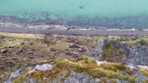 Bøfjellet fra rundt 100 meter opp i fjellet. MMS: Sigurd Kjeldstrup