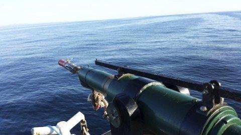 KVAL: En av båtene er nå ferdig med kvoten den har på vågekval.