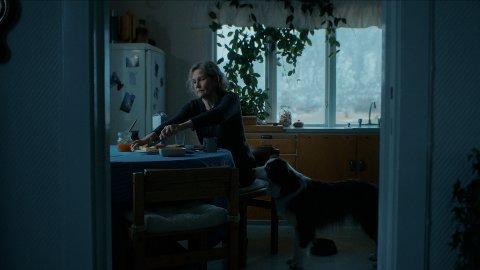 """Stillbilde fra filmen """"IVO"""", som ble spilt inn i Laukvika i 2019."""