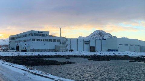 Insula-bygget på Storeidøya, der det onsdag ettermiddag ble meldt om røykutvikling.