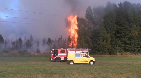 SKOGBRANN: Brann ved Ros i juli.