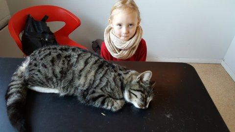 I SMERTER: Line Karlsen og datteren Amanda Sofie tok med katten på Moss dyreklinikk da de oppdaget at hun hadde store smerter. Som følge at dette måtte halen amputeres.