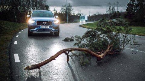 NYTT: Volvo går nye veier når det gjelder trafikksikkerhet, og det skal komme andre biliser til gode.