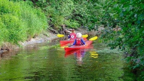 GOD TUR: Padleentusiaster og barn og unge på tur kan nå padle de tre kilometerene fra Elveplassen ved fv115 og ut i Rosefjorden i Vansjø.