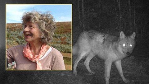 OPPGITT: Helga Riekeles fra Larkollen mener vi gjør Norge til et slakterhus – både for sau og rovdyr.
