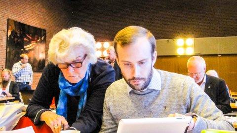 FIKK IKKE FLERTALL: Simen Nord og Høyres forslag om at Viken får Østfolds aksjer i Østfold Energi, fikk ikke flertall. Arkivfoto: Helge Warberg-Knoll