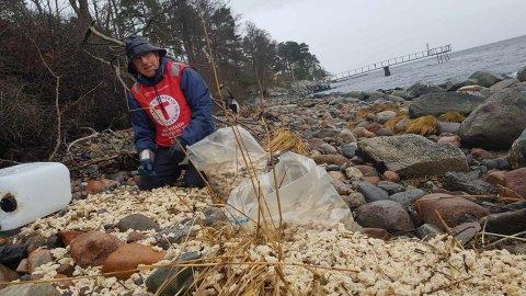 TONNEVIS: Dugnadsgjengen til DNT Vansjø er blant de frivillige som har plukket parafinvoks. Her er Sigurd Karlsen fra Ekholt i gang med å samle mengder av parafinvoks i avfallssekker.