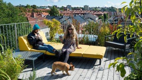Byliv: Med grønne takhager planlegger Oslo House et urbant byliv midt i Moss. Flere politikere synes planene er spennende. Illustrasjon fra Oslo House.