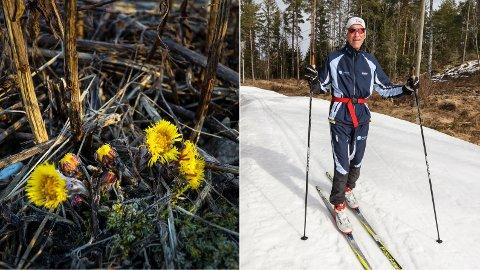 VÅR OG VINTER: Hestehoven hilser på og ønsker Trond Enholm god tur på ski.