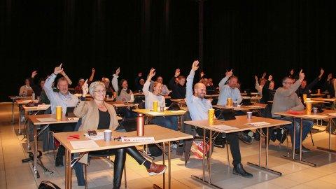 KOMMUNESTYREMØTE: Forslagene Nærøysund ungdomsråd fremmet på kommunestyremøtet ble enstemmig vedtatt. – Det viser at det lønner seg å engasjere seg, sier ordfører Amund Hellesø.