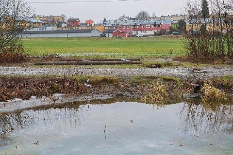 Erosjonsproblemene på vestsiden slik det så ut høsten 2014. Foto: Finn Arnt Gulbrandsen