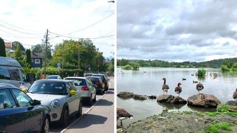 Gateparkering og Østensjøvannet er noen av temaene våre bydeler har innspill om til kommunens nye arealplan.