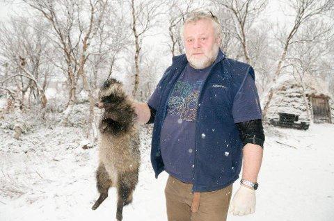 MED HANSKER: Torkjell Morset i Statens naturoppsyn tar ingen sjanser, og tar på seg hansker før han holder mårhunden. Dyret har ofte revbendelorm og rabies-smitte med seg.