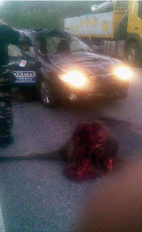 SMADRET: Slik så Subaruen ut etter kollisjonen. Bilen tilhørte Farmen-vinner Mikkel Isak Eira.