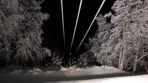 VIKTIG JOBB: Linjerydding er et av de viktigste tiltakene for å forebygge strømbrudd når vinterstormene setter inn.