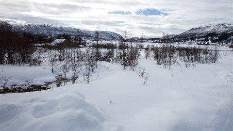 BYGGESTED: Her i Nordbotn i Ramfjord ønsker grunneiere å etablere et nytt boligfelt. - Et ideelt område, mener Knut Helsingeng i Normaid AS.