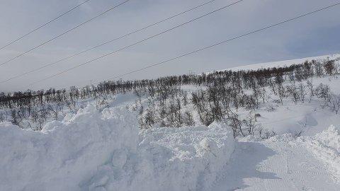 FARLIG NÆRT: Mye snø gjør at kraftlinjer kan komme litt nærmere enn normalt i disse tider.