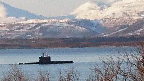 OBSERVERT: Ubåten ble observert i Kjeldebotn i Ballangen torsdag, mens den gikk inn Ofotfjorden. Foto: Fremover-tipser