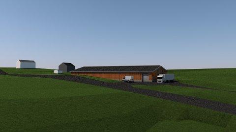 MAGASINBYGG: Et nytt bygg som skal huse Mjøsmuseets samling på 30.000 gjenstander er planlagt bygget i massivt tre.