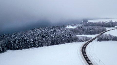 Dette skogområdet mellom Mjøsa og Fylkesveg 33 i Nordlia ønskes frigitt til bygging av inntil 220 boliger.