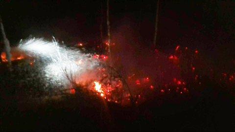 AVSVIDD: Omlag 20 kvadratmeter skog ble svidd av før brannmannskap fikk kontroll.