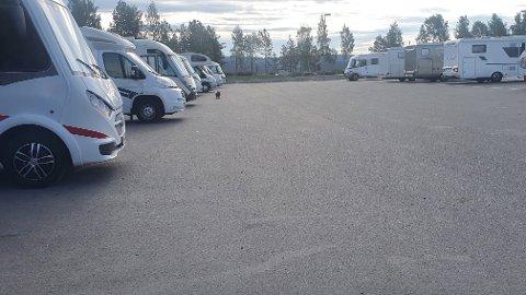 POPULÆRT: Det er bare å parkere på de vanlige parkeringsplassene på Mjøsstranda, ifølge Gjøvik kommune.