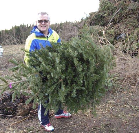 PÅ DYNGA: Tor Karlsen leverte edelgranen fredag. Juletrærne blir kvernet opp til kompost sammen med hageavfall. ALLE FOTO: INGER EIDEM
