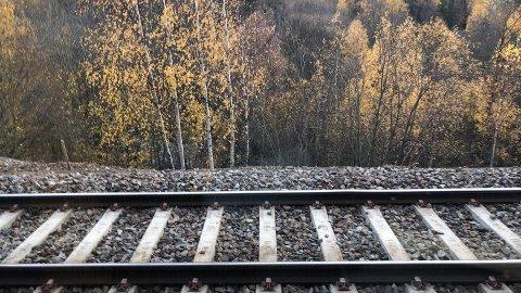 STANS: Toget stoppet rett etter Hauketo stasjon.