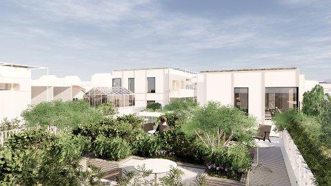 UTFORDRER: - Boligprosjektet vårt i Solbakken skal utfordre den tradisjonelle måten å bygge leiligheter på, sier Harald Schytz og Falko Müller-Tyl. Foto: Element Arkitekter